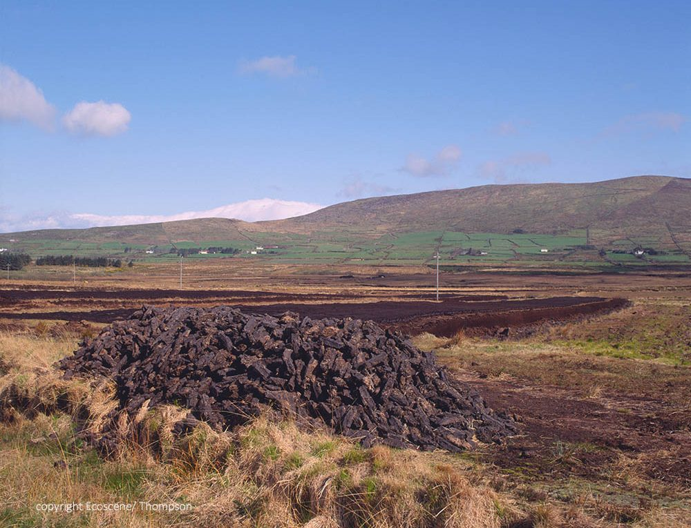 Cutting peat for cgarden compost