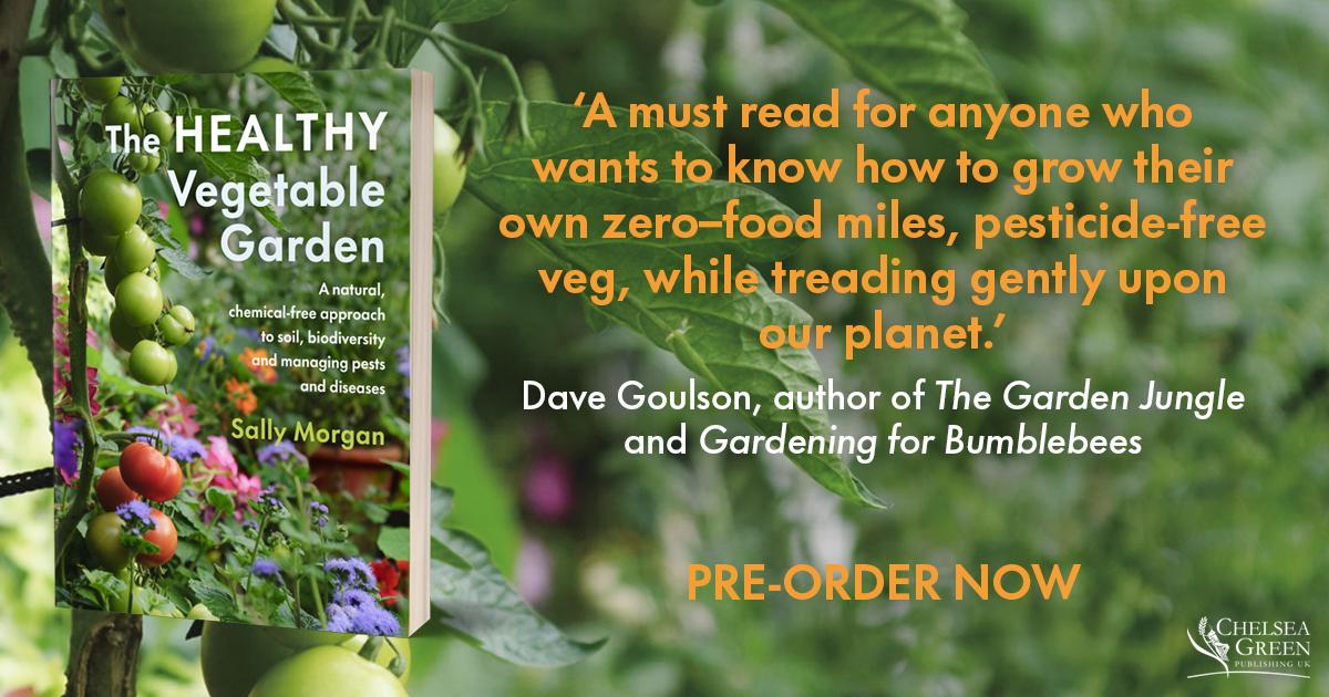 The Healthy veg garden
